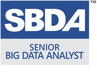 Senior Big Data Analyst